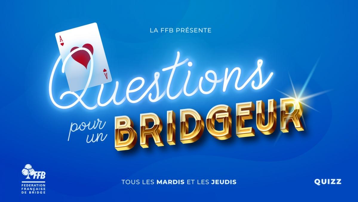 Visuel Questions pour un bridgeur 2.jpg
